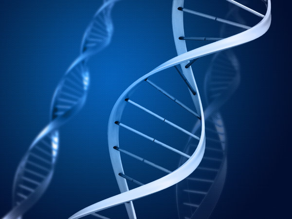 genetic paper research testing